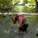 Benthic Macroinvertebrate Bioassessment Studies