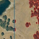 Image Processing and Land Cover Analysis